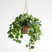 Hanging Faux Pothos Plant with Basket